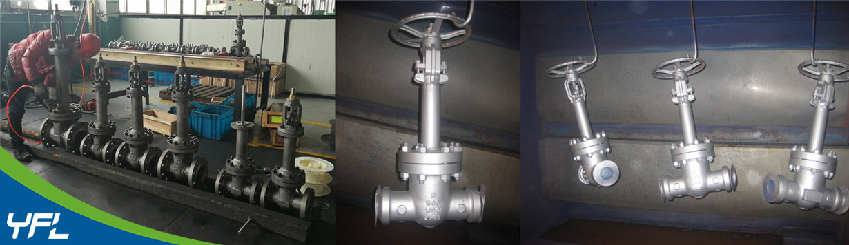 WC9 High temperature bellows seal gate valves