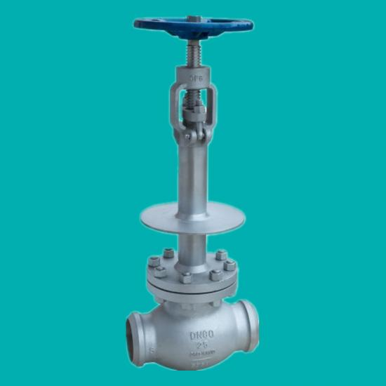 Cryogenic globe valves