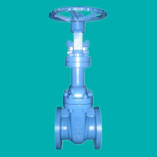 Bellows seal gate valves for steam